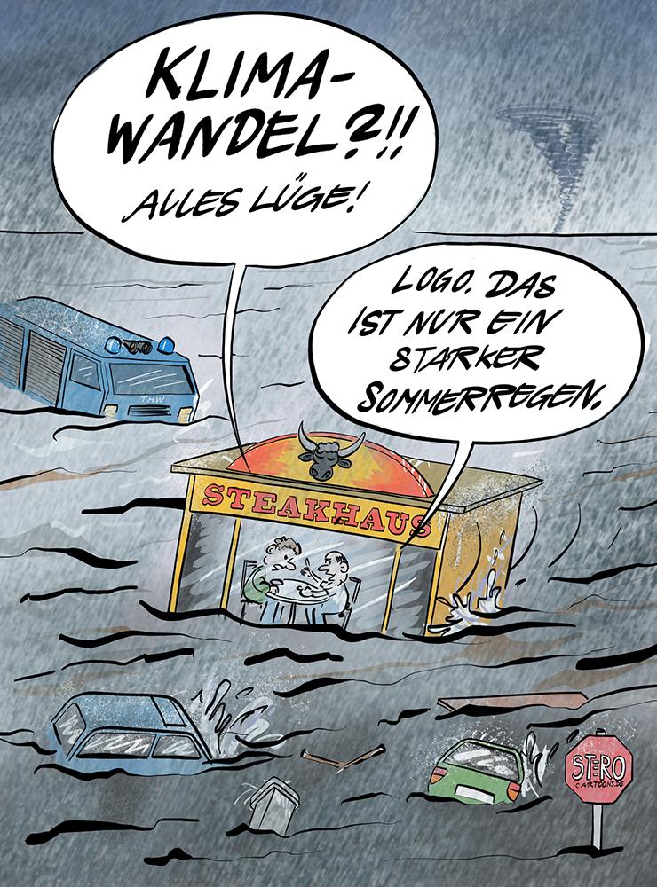 Cartoon Karikatur Überschwemmung